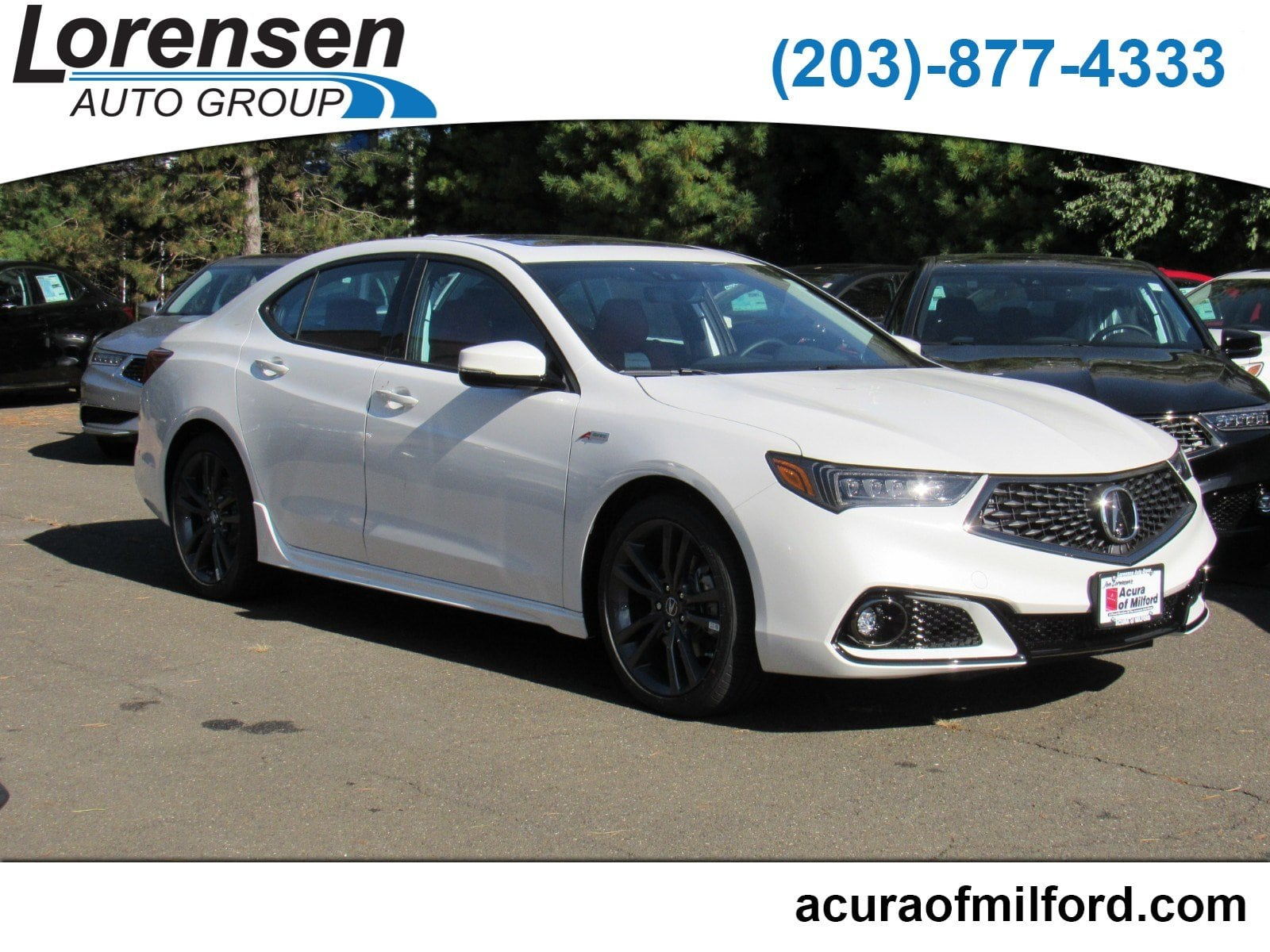 New 2019 Acura TLX 2 4 8 DCT P AWS with A SPEC RED Sedan in Milford